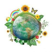 DIA VERDE | campanha de sensibilização e educação ambiental